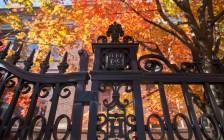 哈佛大学亚裔招生歧视案开庭 最终可能上诉至最高法院