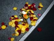 """少年自杀,是因为缺乏""""挫折教育""""吗?"""