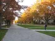 UBC大学学费突涨8千多?2021年加拿大大学学费清单!