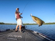 安省340个省立公园明天免费!没有牌照也可以钓鱼!