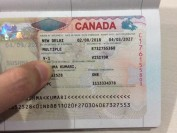 加拿大都有哪些签证类型?