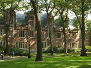 从美国Wellesley College的女性学专业来聊聊有关专业的那些事儿
