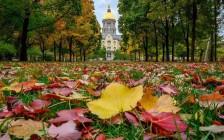 为什么美国精英大学的学生更务虚?