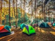 加拿大部分国家公园6月22日起恢复露营