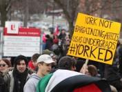 约克大学罢工进入第九周 校方开始向学生提供学费优惠