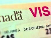 是什么让加拿大批签证越来越难申请?