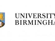 中国留学生在英大学遭石头袭击 歧视现象再引关注