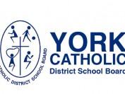 大多伦多约克区天主教教育局和学校介绍