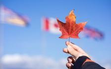 那些移民加拿大的人,现在都过得怎么样?
