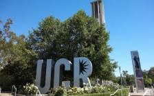 """加州大学刚刚被爆招生舞弊,过去七年至少64名申请者被""""不当录取"""""""