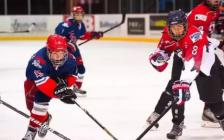为什么说冰球是加拿大的骄傲?