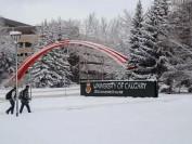 加拿大艾伯塔省著名大学—卡尔加里大学Calgary University