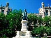 大学变网校,芝加哥大学学生要求退还学费,校方:不退!