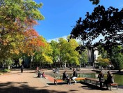 加拿大维多利亚大学的专业,申请和录取