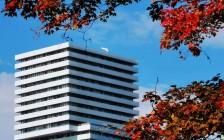 最新报告:大多伦多所有类型住宅价格都在涨!