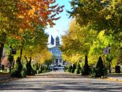 加拿大麦吉尔大学:一所享誉全球的大学
