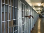 花钱就能进哈佛等美国名校!这家PE基金创始人行贿送3子女上大学 将面临最多20年监禁