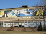 多伦多公立教育局下属公立艺术学校介绍