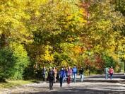 加拿大魁北克公校私校和教育体制最全介绍