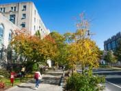 波士顿大学计划在2021年秋季学期恢复常规面对面教学