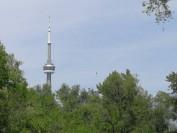 加拿大犯罪严重程度,多伦多算很低的了!