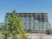 移民涌入5年 多伦多这八个地区公寓价格翻倍