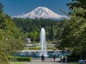 美国西雅图华盛顿大学80多名学生确诊新冠病毒!